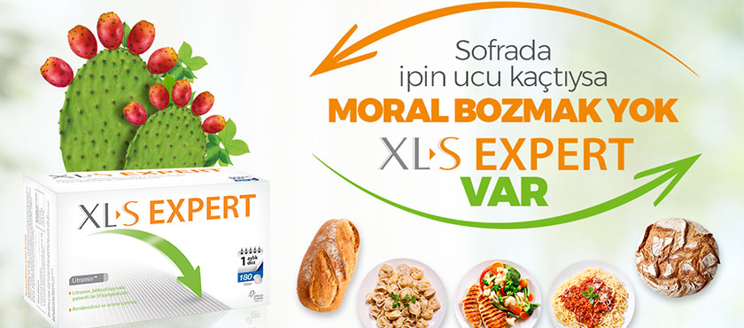XL-S Expert